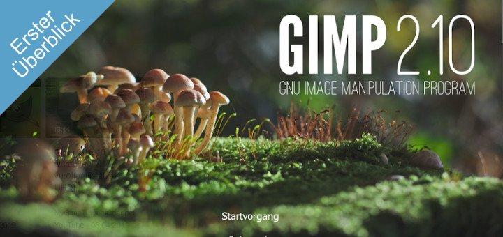 Gimp Overview