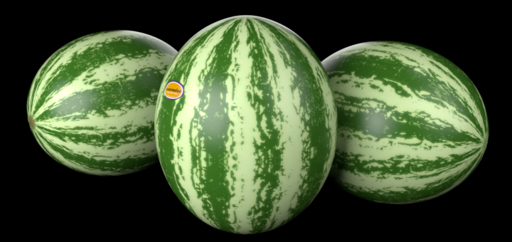 Gimp Watermelon Texture Tutorial