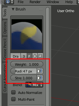 Blender Weight Paint Settings