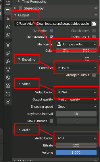 Video Settings with Audio